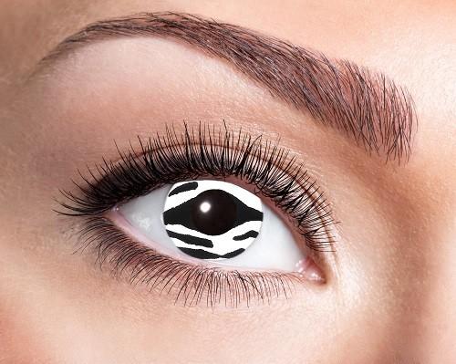 Eyecatcher Fantasy 12 Monatslinsen Zebra Eye