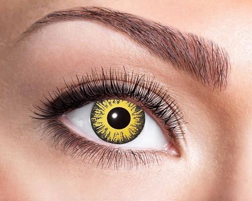 Eyecatcher Fantasy 12 Monatslinsen Sunflower